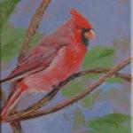 Cardinal (sold) 2016
