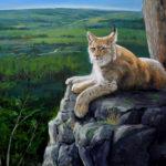 "Lynx, Above the Beaver Valley, 2019 30"" x40"" acrylic on canvas"