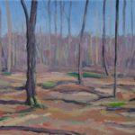 November Woods 2015