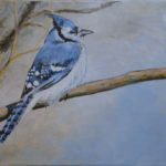 The Bluejay 2015  (private collection)