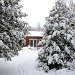 The Studio, Winter 2018-19