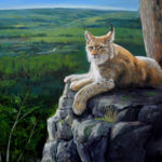"Lynx, Above the Beaver Valley, 2019 30"" x40"" acrylic on canvas (private collection)"